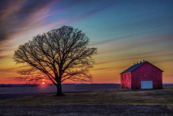 BarnSet - Wisconsin Rural Sunset with Oak and Barn by Peter Herman