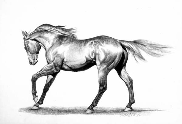 Thoroughbred Art Print featuring the drawing Proud by Howard Dubois