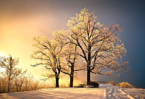 Winter Art Print featuring the photograph Luminous - Blue Ridge Winter Sunset by Dave Allen