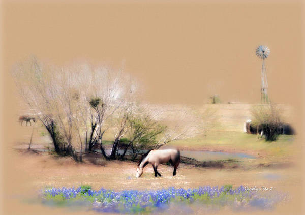 Texas Horses Pasture Bluebonnets Windmill Landscape Art Print featuring the painting Taking It Slow And Easy by Carolyn Staut