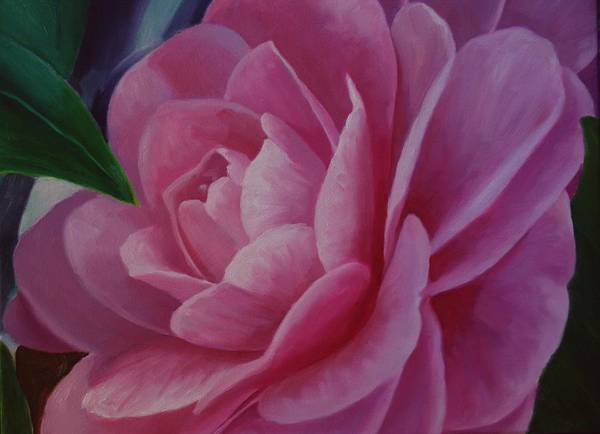 Flower Art Print featuring the painting California Rose by Marilyn Tower