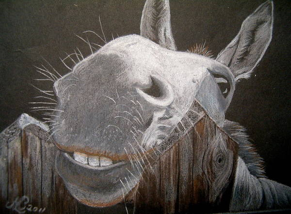 Donkey Art Print featuring the drawing Bruno The Laughing Ass by Marita Lipke