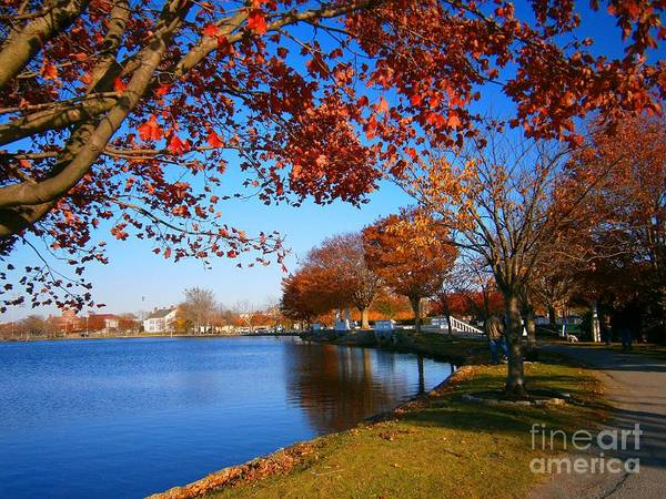 Autumn Landscape Art Print featuring the pyrography Autumn At Argyle Park by Holly Martinson