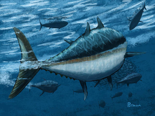Tuna Print featuring the digital art The Chase by Kevin Putman