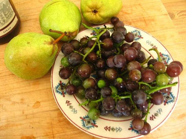 Grapes Art Print featuring the photograph First Harvest by Deb Martin-Webster