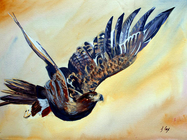 Easgle. Bird. Art Print featuring the painting Flying Eagle by John Cox