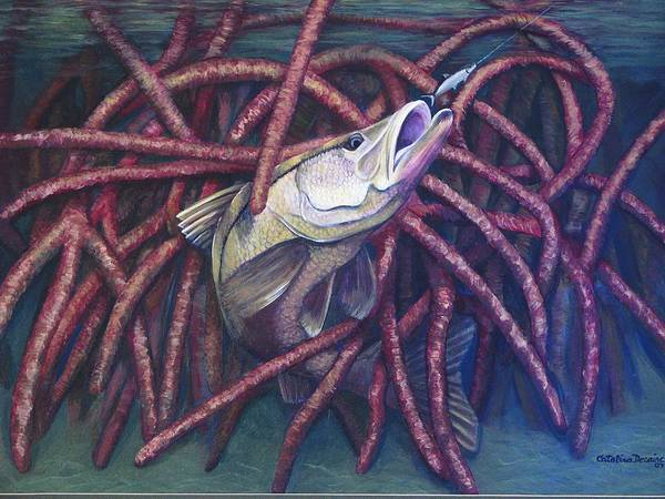 Fish Art Print featuring the painting Mangrove Snook by Catalina Decaire