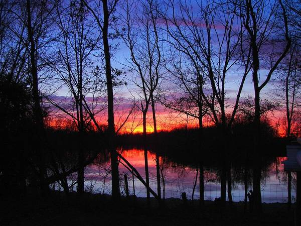 Lake Art Print featuring the photograph My Backyard by J R Seymour