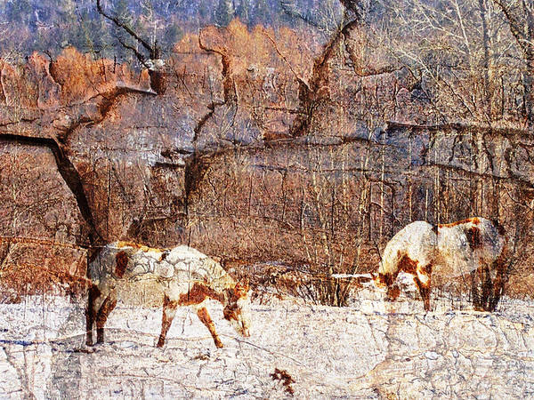 Horses Art Print featuring the photograph Painted Horses by Melvin Kearney