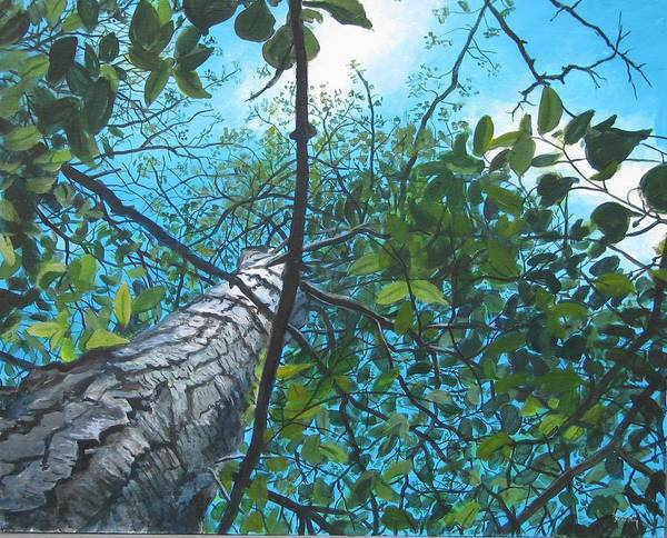 Landscape Art Print featuring the painting Skyward by William Brody