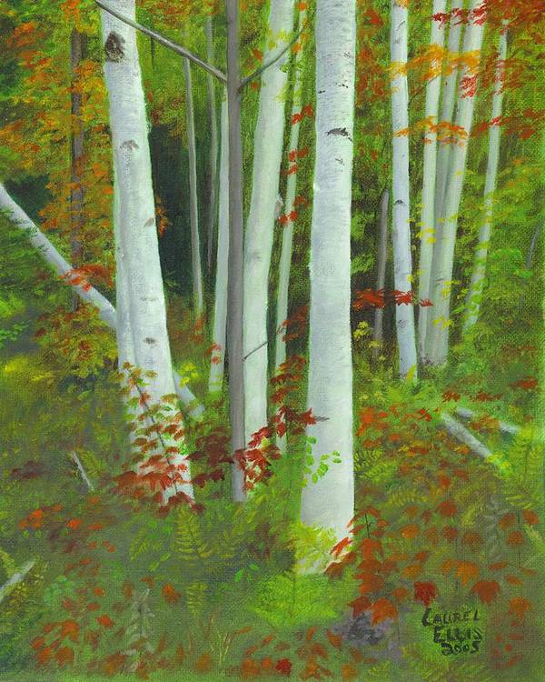 Landscape Art Print featuring the painting Autumn Birches by Laurel Ellis