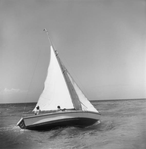 1950-1959 Art Print featuring the photograph Jamaica Sea Sailing by Slim Aarons