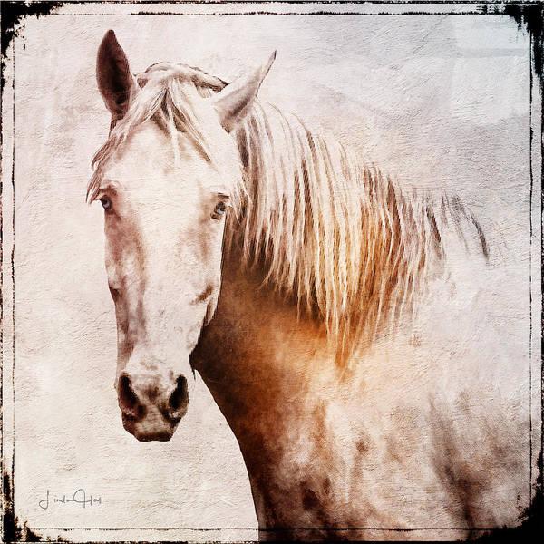 Horse Art Print featuring the digital art Listening by Linda Lee Hall