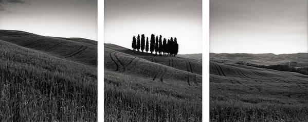 Tuscany Art Print featuring the photograph Tuscany Triptych by Michael Hudson
