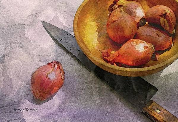 Shallots Art Print featuring the digital art Shallots Digital Watercolor by James Temple