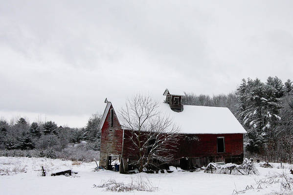 Snow Art Print featuring the photograph Falling Into Ruin by Linda Lee Hall