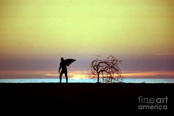Surfer Beach Sunset Surfboard Seaside Beach Art Print featuring the photograph Surfer Dude by Carolyn Staut