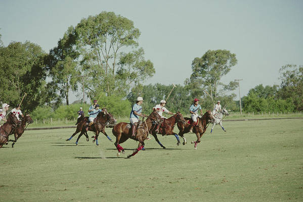 Horse Art Print featuring the photograph Polo Match by Slim Aarons