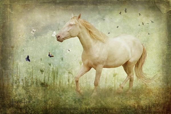 Horse Art Print featuring the digital art Chasing Butterflies by Linda Lee Hall
