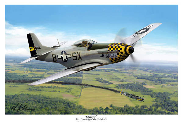 Aviation Art Print featuring the painting Slybird by Mark Karvon
