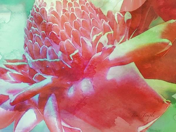 Hawaii Calling Art Print featuring the digital art Hawaii Calling by James Temple