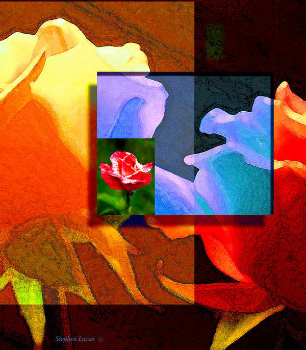 Modern Art Print featuring the digital art Backlit Roses by Stephen Lucas