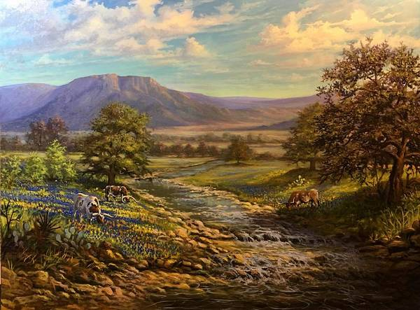 Texas Hillcountry Spring  by David Swantner