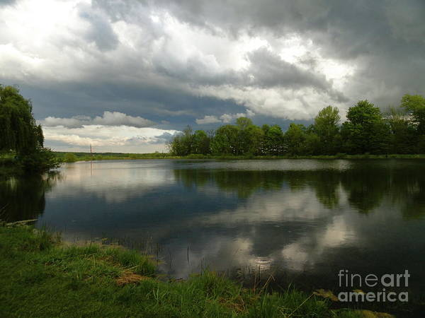 Flora Photographs Art Print featuring the photograph Cloudy With A Chance Of Paint 1 by Trish Hale