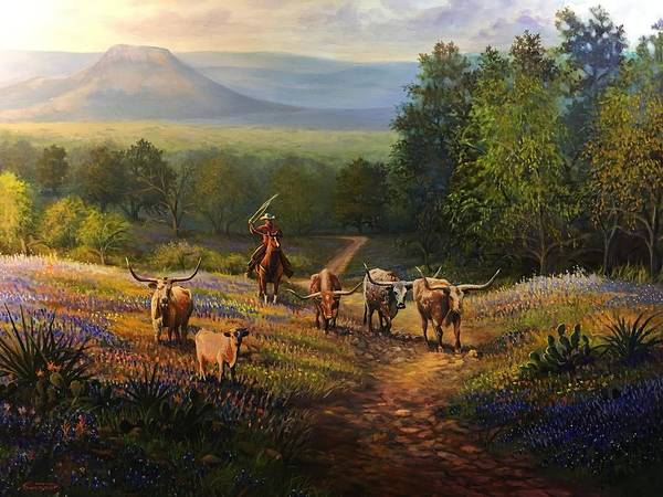 Willow City Loop Round Up by David Swantner