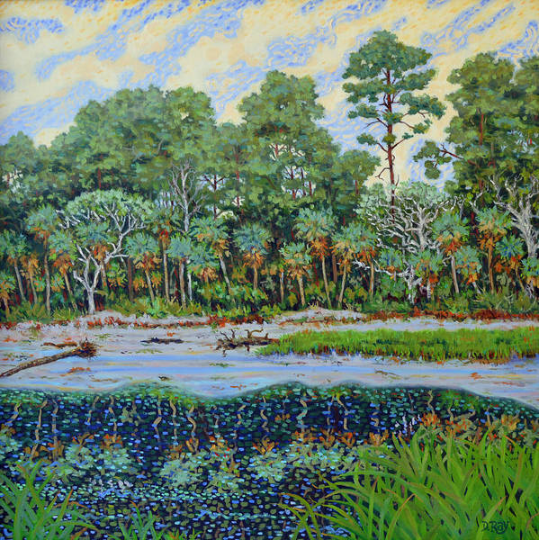 Island Art Print featuring the painting Sunrise On Hunting Island Lagoon by Dwain Ray