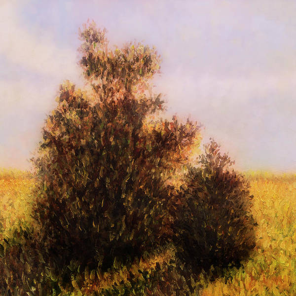 Art Print featuring the painting Morning In Texas - No 1 by Rob Blauser
