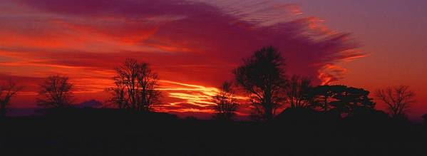 Sunset Art Print featuring the photograph 022107-37 by Mike Davis