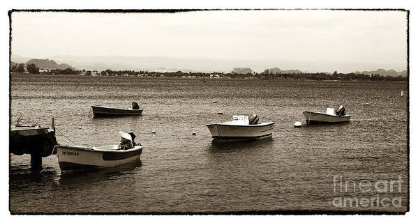 Barcos Art Print featuring the photograph Barcos by John Rizzuto