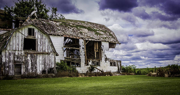 Wisconsin Barns Art Print featuring the photograph Room With A View Please by Kathleen Scanlan