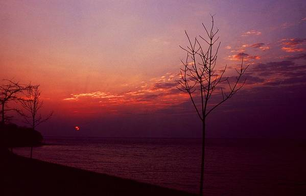 Sunset Art Print featuring the photograph 112601-20 by Mike Davis