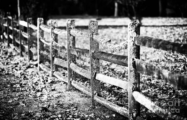 Wooden Fence Art Print featuring the photograph Wooden Fence by John Rizzuto