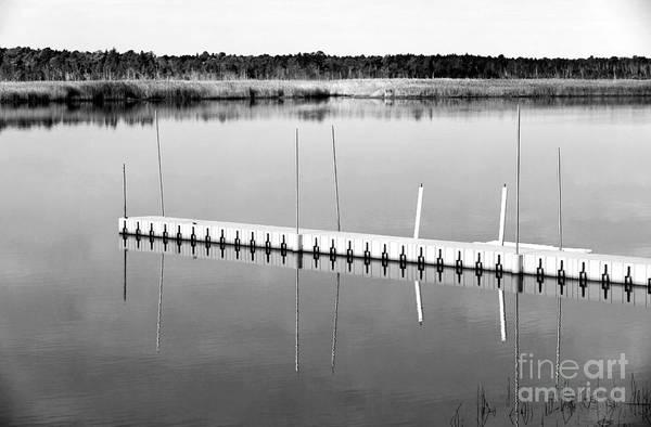 Pine Barrens Dock Art Print featuring the photograph Pine Barrens Dock by John Rizzuto