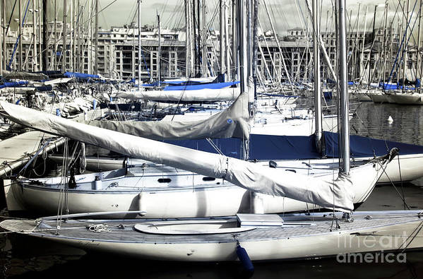 Choices In The Port Art Print featuring the photograph Choices In The Port by John Rizzuto