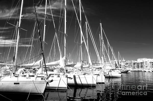 Sailboats Docked Art Print featuring the photograph Sailboats Docked by John Rizzuto