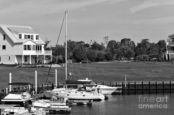 Sailboats Docked At North Myrtle Beach Art Print featuring the photograph Sailboats Docked At North Myrtle Beach Mono by John Rizzuto