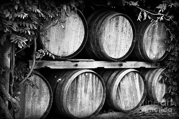 Wine Art Print featuring the photograph Wine Barrels by Scott Pellegrin