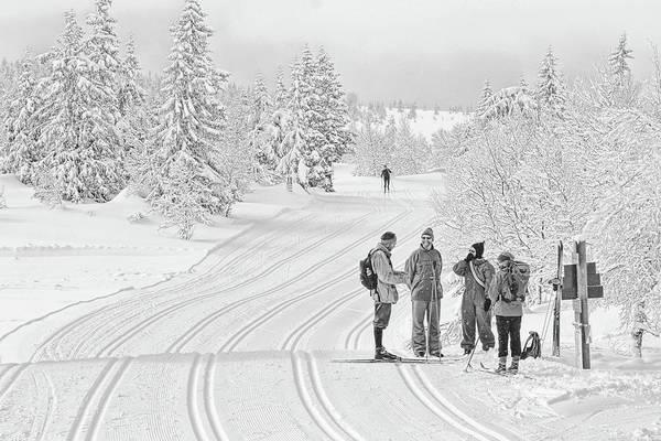Ski Trail Art Print featuring the photograph Birkebeiner Ski Trail by Dan McMahon