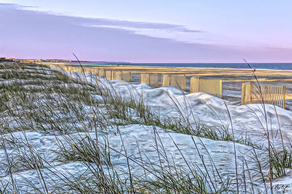 Protecting Dunes And Turtles by Phill Doherty