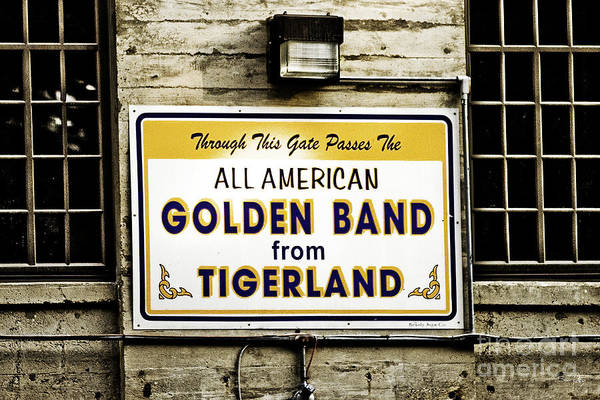 Tigers Print featuring the photograph Tigerland Band by Scott Pellegrin