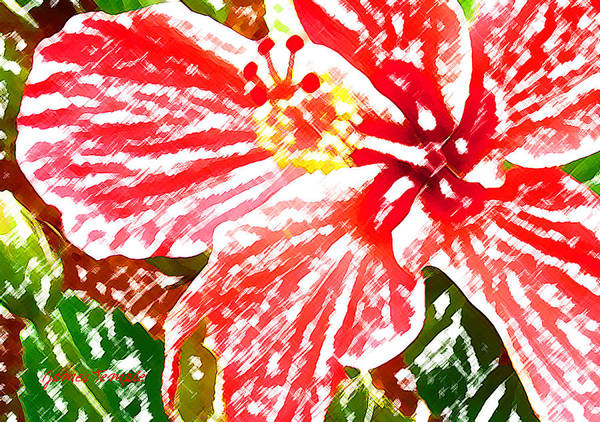 Hibiscus Art Print featuring the digital art Hibiscus by James Temple