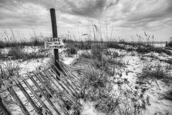 Fort Morgan Beaches in Black and White by JC Findley