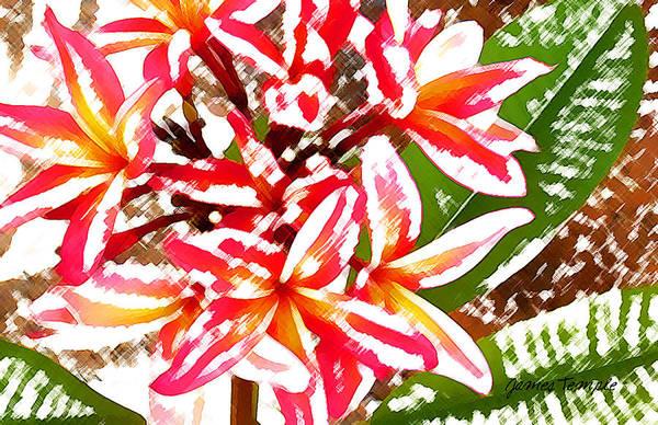 Plumeria Art Print featuring the digital art Plantation Plumeria by James Temple