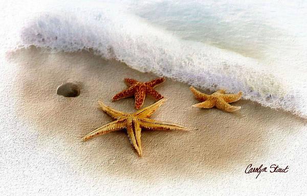 Starfish Seascape Beach Water Sea Ocean Waterside Beach Shells Tropical Art Print featuring the digital art Three Starfish Treasures by Carolyn Staut