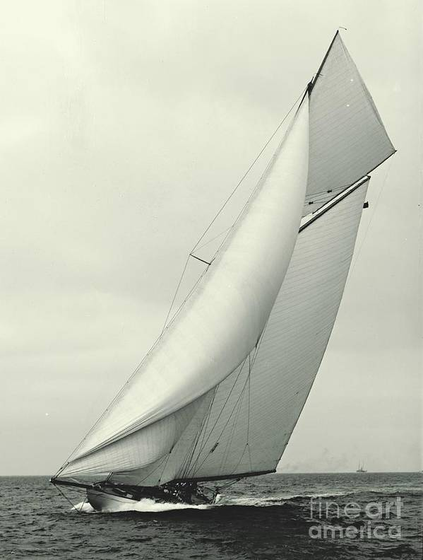 Yacht Columbia 1901 by Padre Art