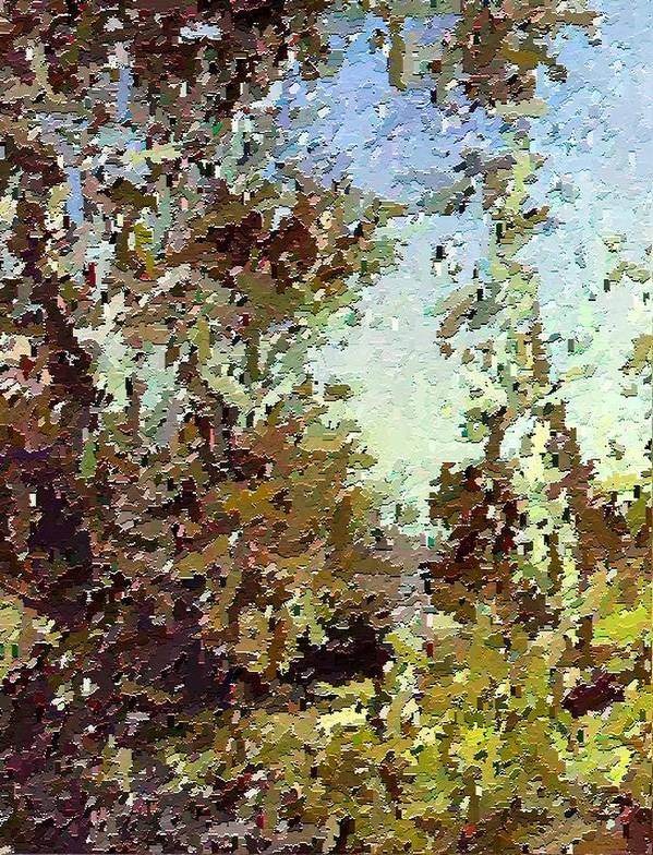 Abstract Art Print featuring the painting Trees In The Back Yard by Don Phillips